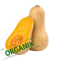 Carisayur Produk Butter Nut Pumkin Organik