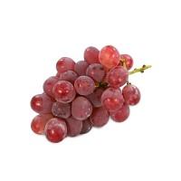 Carisayur Produk Anggur Merah Pack