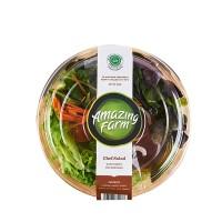 Carisayur Produk  Chef Salad Amazing Farm