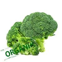 Carisayur Produk Brokoli Organik