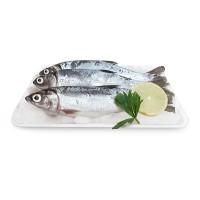 Carisayur Produk  Ikan Bandeng Frozen